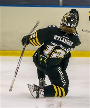 Alexander Nylander, brother of Leafs prospect William Nylander, is eligible for the Import Draft but is a long shot to play in the CHL.