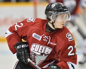 Pius Suter of the Guelph Storm. Photo by Terry Wilson / OHL Images.