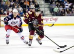 AHL: DEC 11 Chicago Wolves at Lake Erie Monsters