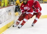 February 5, 2016: Cornell Big Red defenseman Reece Willcox (3) and Quinnipiac Bobcats forward Tanner MacMaster (19) skate towards the puck during the Cornell University and Quinnipiac University NCAA Men's ice hockey game at High Point Arena in Hamden, CT (Photo by John Crouch/Icon Sportswire.)