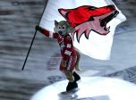 March 9, 2013: The Phoenix Coyotes mascot before the game between the Phoenix Coyotes and Dallas Stars at Jobbing.com Arena in Glendale, Arizona.