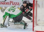 Jett Woo of the Moose Jaw Warriors. Photo by Stephen Simon/Moose Jaw Warriors