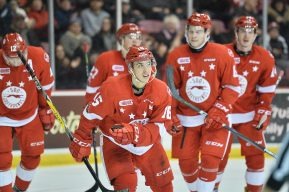 Sault Ste. Marie Greyhounds of the Ontario Hockey League. Photo by Terry Wilson