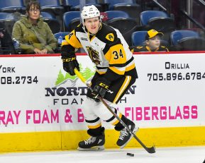 Forward #34 Arthur Kaliyev of the Hamilton Bulldogs